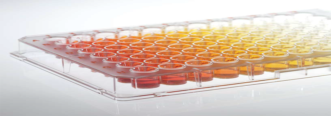 96-Well Cell Culture Surface