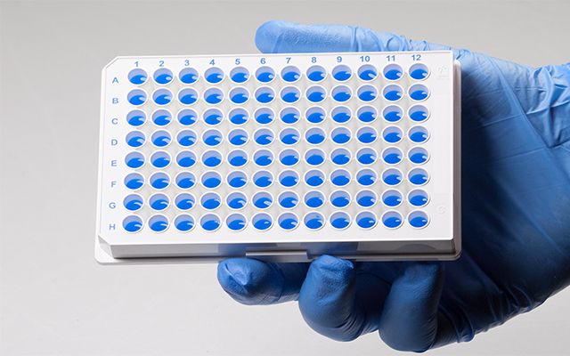 96-Well Stnadard Format Microplate - White With Blue Liquid