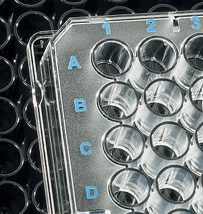 Transparent 96-well Microplate